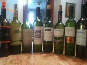 The line up for the Malbec tasting with wines from France and Argentina...and a New Zealander