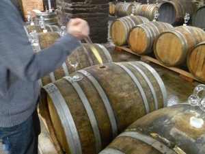 Barrel tasting 2013s at Immich-Batterieberg