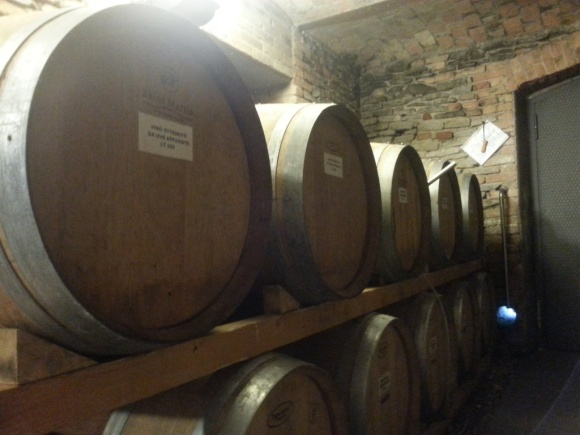 Ezio Cerruti's small cellar